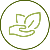 DSE_About_Icon1